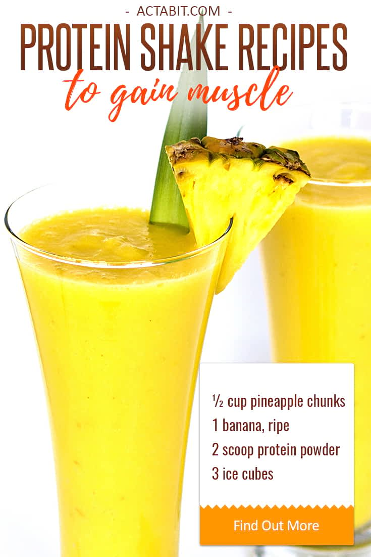 Healthy protein shakes are packed with the nutrients needed to gain muscle: protein, vitamins and minerals. Protein shakes help women and men recharge after a muscle building workout. Check easy protein shake recipes to gain muscle.